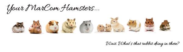 MarCom hamsters